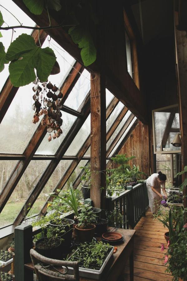 wintergarten bauen holz gartenhaus wintergarten pflanzen und gemüse