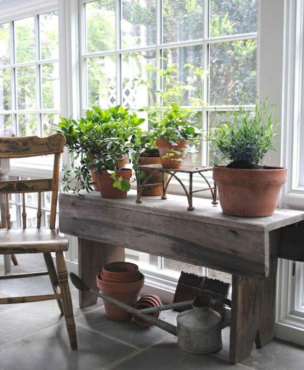 wintergarten gestalten einrichtungsideen zimmerpflanzen tontöpfe