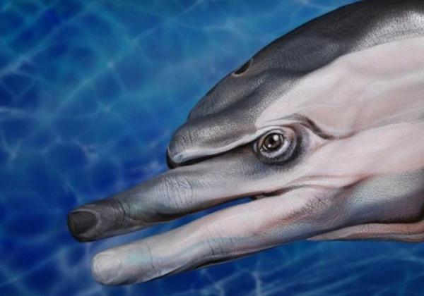 moderne kunst delfin