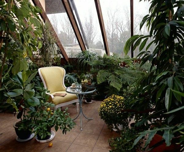 zimmergrünpflanzen wintergarten gestalten möbel dachschräge