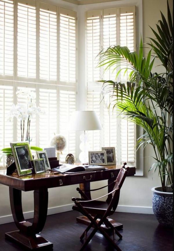 tipps f r die richtige pflege der goldfruchtpalme. Black Bedroom Furniture Sets. Home Design Ideas