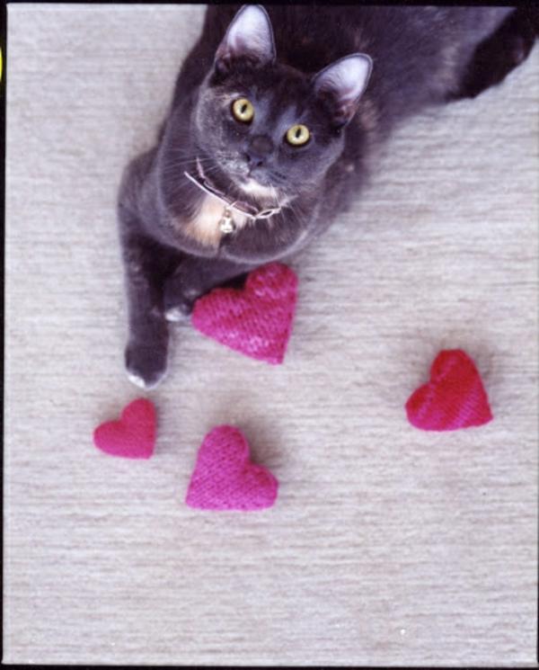 Basteln zum Valentinstag herzen stricken