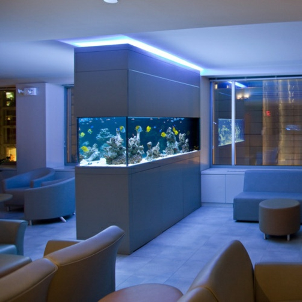 brillante aquarium dekoration verleiht ihrem zuhause exotische note. Black Bedroom Furniture Sets. Home Design Ideas