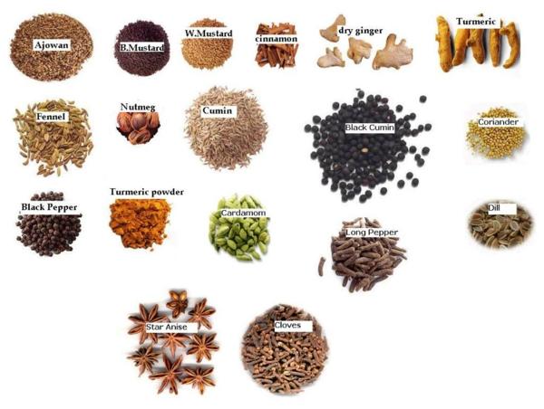Indisches essen traditionelle indische gewürze