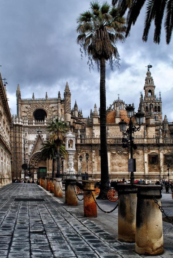 Urlaub Südspanien Sevilla straßen palmen kathedrale