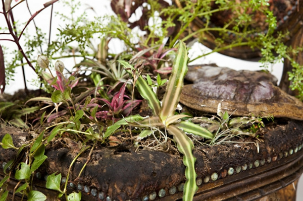 Zimmer pflanzen pflegen bepflanzte polstermöbel grün