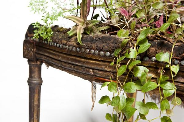 topfpflanzen pflegen bepflanzte polstermöbel lebendig