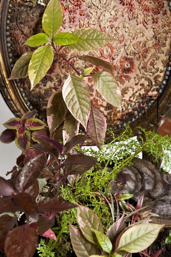 topfpflanzen pflegen bepflanzte polstermöbel pflegeleicht