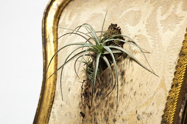 pflanzen pflegen bepflanzte polstermöbel rückenlehne