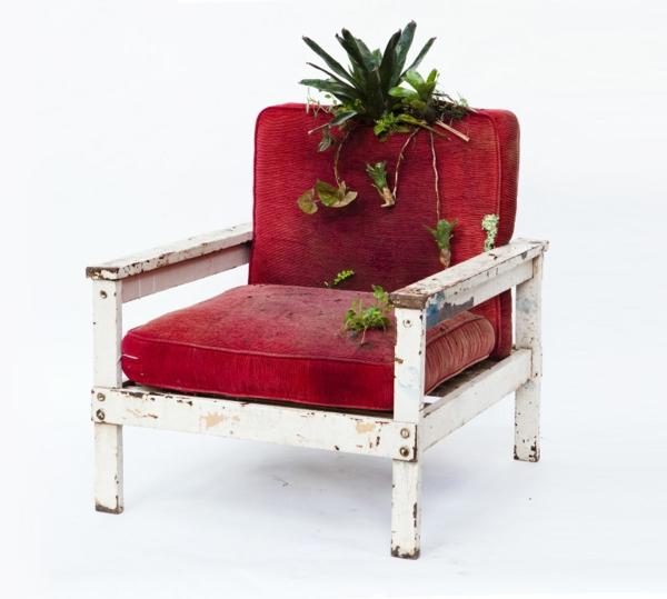 topfpflanzen pflegen bepflanzte polstermöbel rot sessel