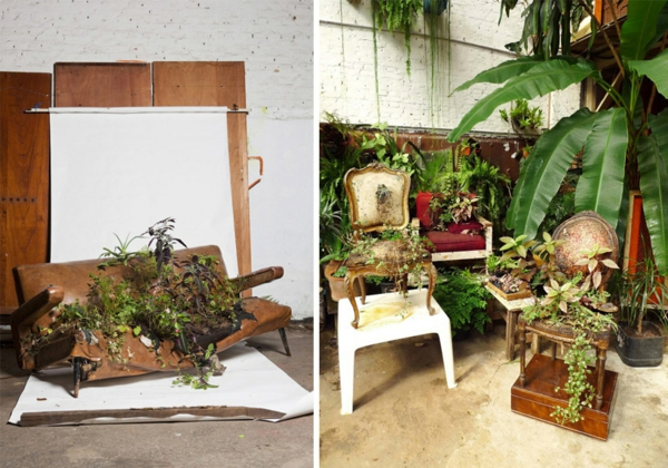 topfpflanzen pflegen bepflanzte polstermöbel studio