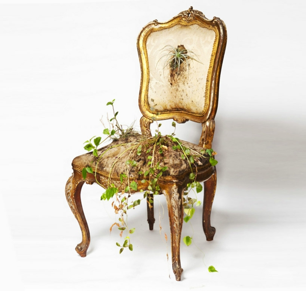 pflegen bepflanzte polstermöbel stuhl