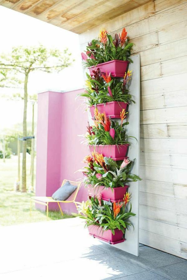 blumenkasten bepflanzen blüten