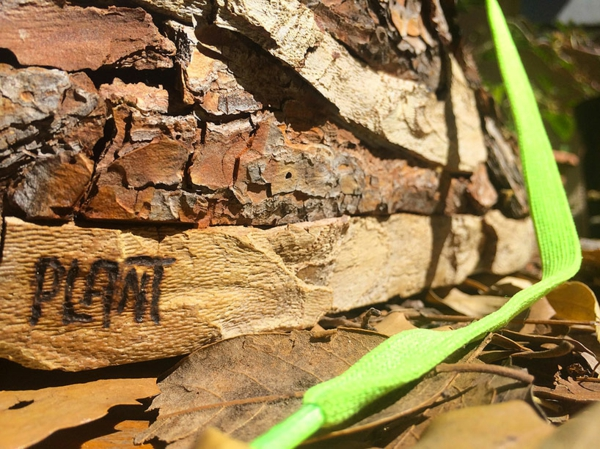 christophe guinet nike sneakers nachhaltiges design aus naturholz