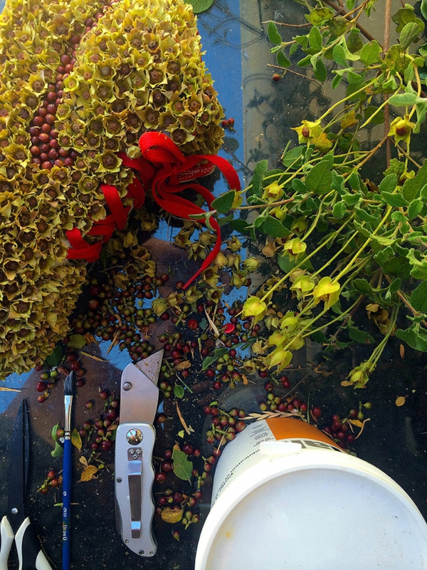 christophe guinet nike sneakers projekt mit pflanzen