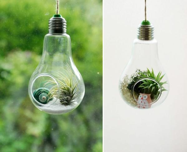 diy projekte alte glühbirnen bastelideen terrarium hängend