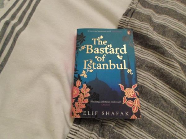 elif shafak weltliteratur the bastards of istanbul