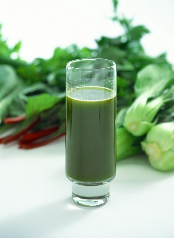 fastenkur kräuter grüner saft