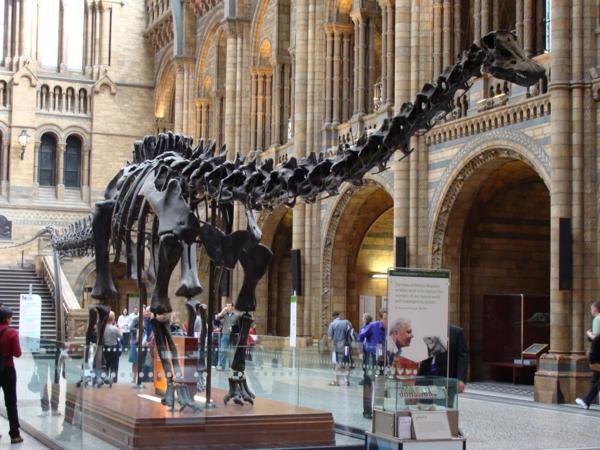 hauptstädte europa urlaub in london naturgeschichte museum
