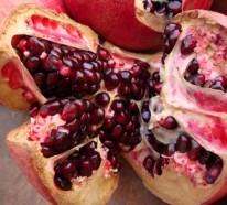 Kalorienarmes Essen – Wissenswertes für die kalte Jahreszeit