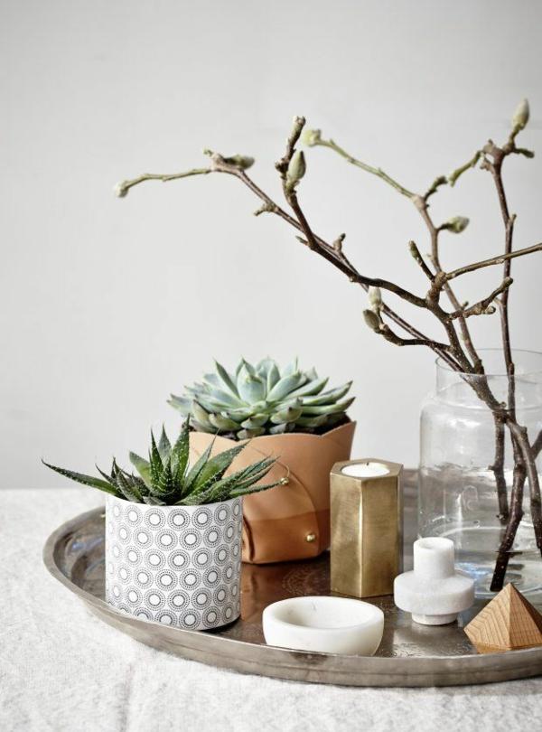 modern hausfrauen gemütliches zuhause zimmerpflanzen