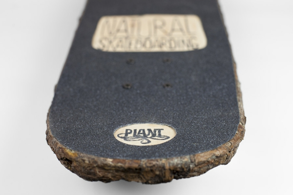 nachhaltiges design naturholz naturholz skateboard