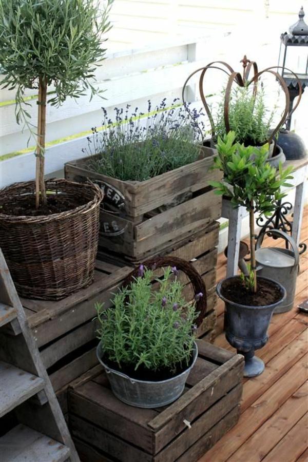 pflegeleichte Balkonpflanzen kasten holz rustikal