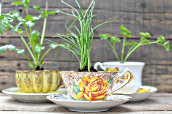 Blumentöpfe elegante draußen basteln teetasse