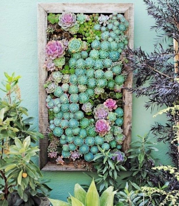 sukkulenten Garten Ideen gartenideen