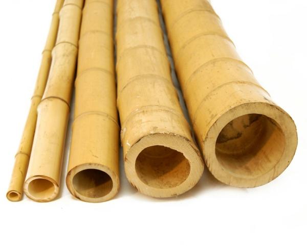 bambus deko stämme baumaterial naturfarbe