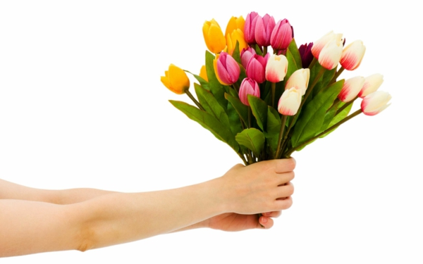 blumenstrauß tulpen schönes geschenk blumen pflanzen
