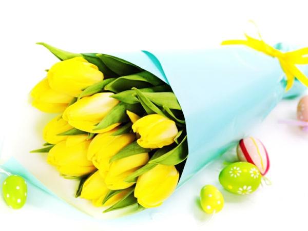 die tulpe gelbe tulpen frühling ostereier