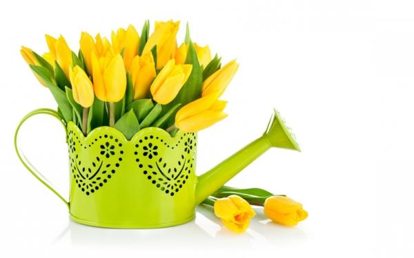 die tulpe gelbe tulpen interessanter pflanztopf