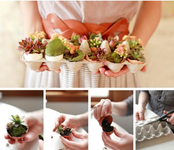 diy ideen pflanzenbehälter eierschachtel schöne wohnideen