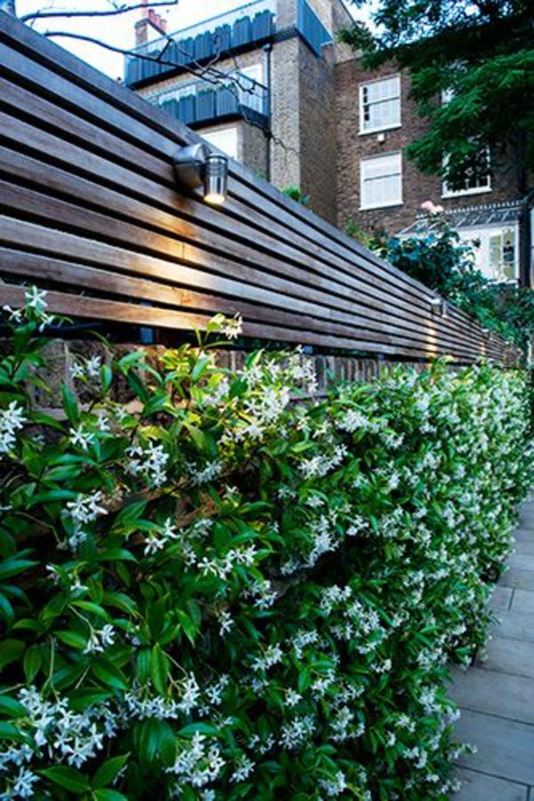 gartenzaun holz platten massiv wandlampen Immergrüne Gartenpflanzen