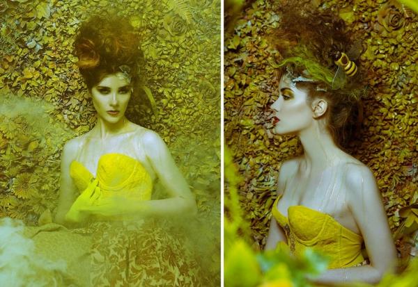 fotokunst bienen königin gelb