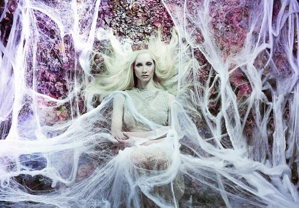 foto kunst königin weiße spinnwebe