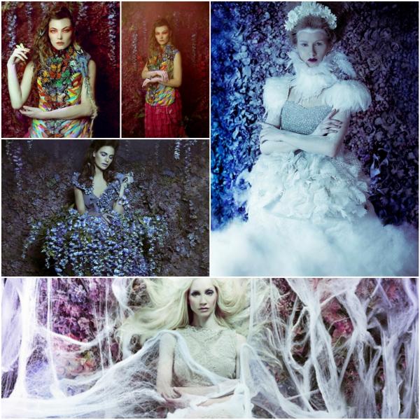 fotokunst collage blumen frauen