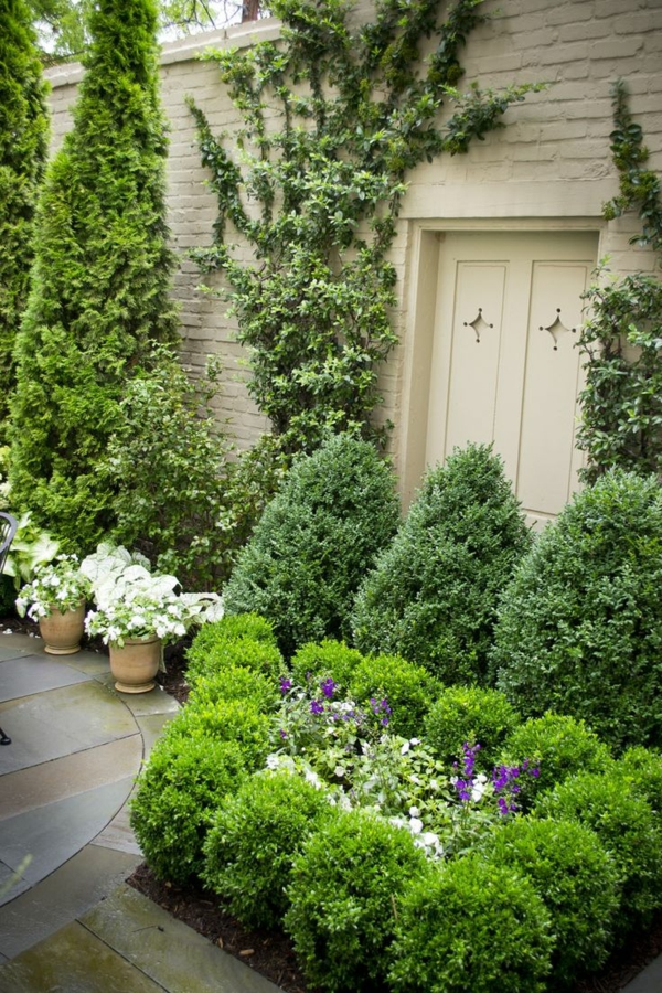 frisch grün pflanzen garten