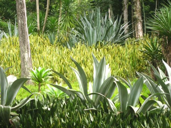 gartengestaltung ideen bogenhanfgartenpflanzen ideen grünpflanzen