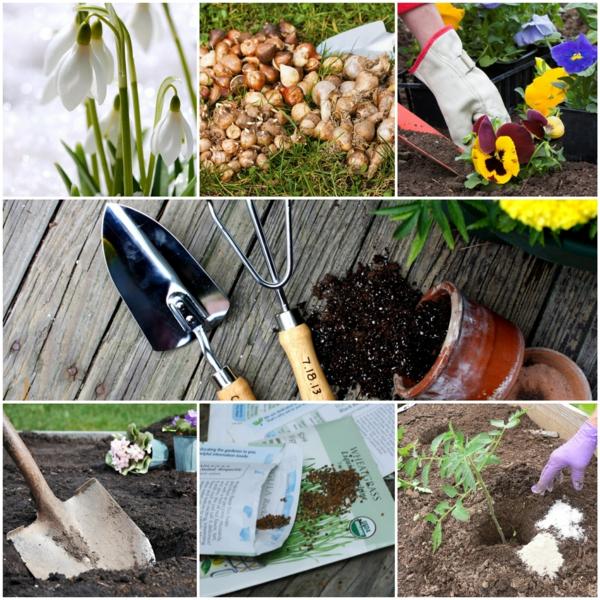 gartenkalender märz einpflanzen gartenarbeit erde