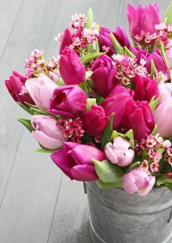 gartenkalender märz gartenarbeit frühlingsblumen tulpen