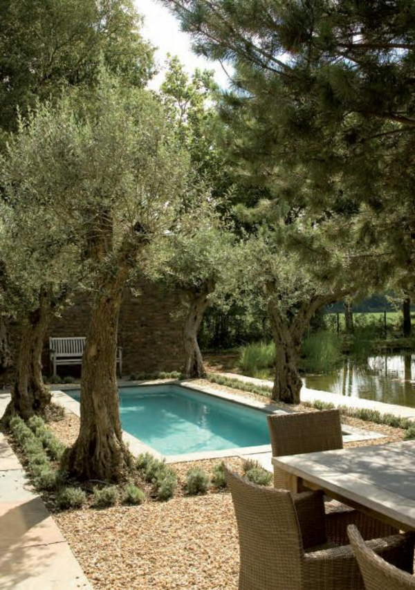 gartenpool aufstellen swimmingpool designs kaufen bäume