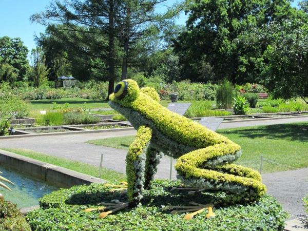 gartenskulpturen frosch botanischer garten
