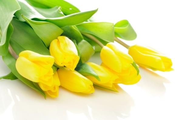 gelbe tulpen blumenstrauß geschenk ideen dekoideen