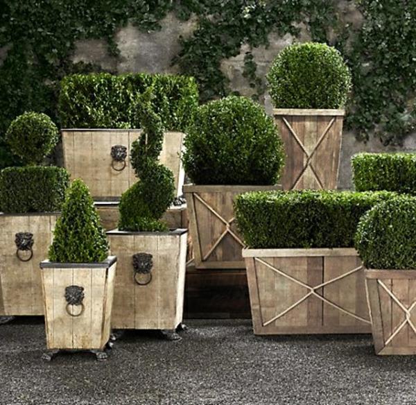 immergr ne gartenpflanzen str ucher und hecke f r frische. Black Bedroom Furniture Sets. Home Design Ideas