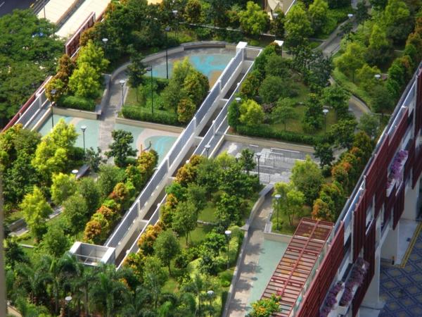 grünes dach park bäume alleen
