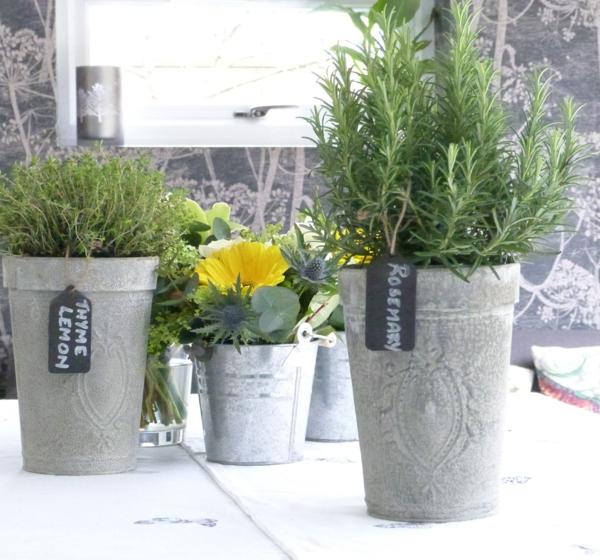 haare gesund pflegen rosmarin topfpflanze