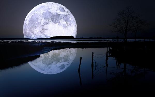 japanische sternzeichen mond nacht