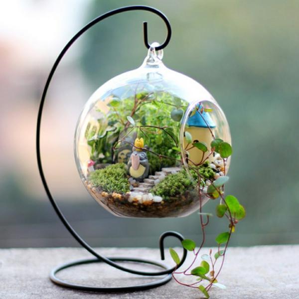 Kaffeekanne terrarium mit herrlichen luftpflanzen selber for Pflanzen im glas